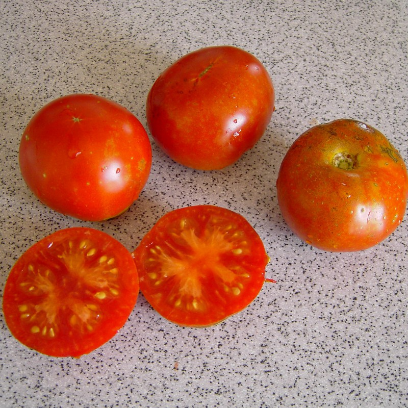 tomate stupice tomaten. Black Bedroom Furniture Sets. Home Design Ideas