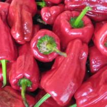 Chili - Türkischer Gewürzpaprika