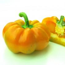 Paprika - Paradeisfrüchtiger Gelber