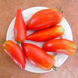 Samenset Tomaten Expert