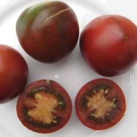 Tomate - Black Plum