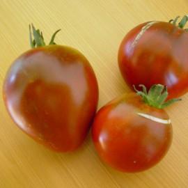 Fleischtomate - Lilac