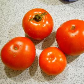 Tomate - Lungi Si Rotunde