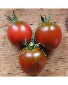Tomate - Black Ethiopian