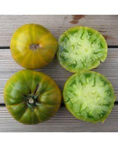Fleischtomate - Evergreen