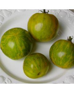 Tomate - Green Zebra