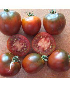 Tomate - Paul Robson